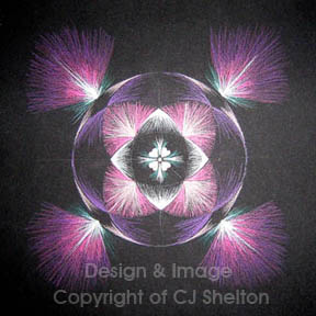 """Heart of the Kingdom"" by CJ Shelton"
