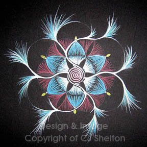 """Spiral Fireworks"" by CJ Shelton"