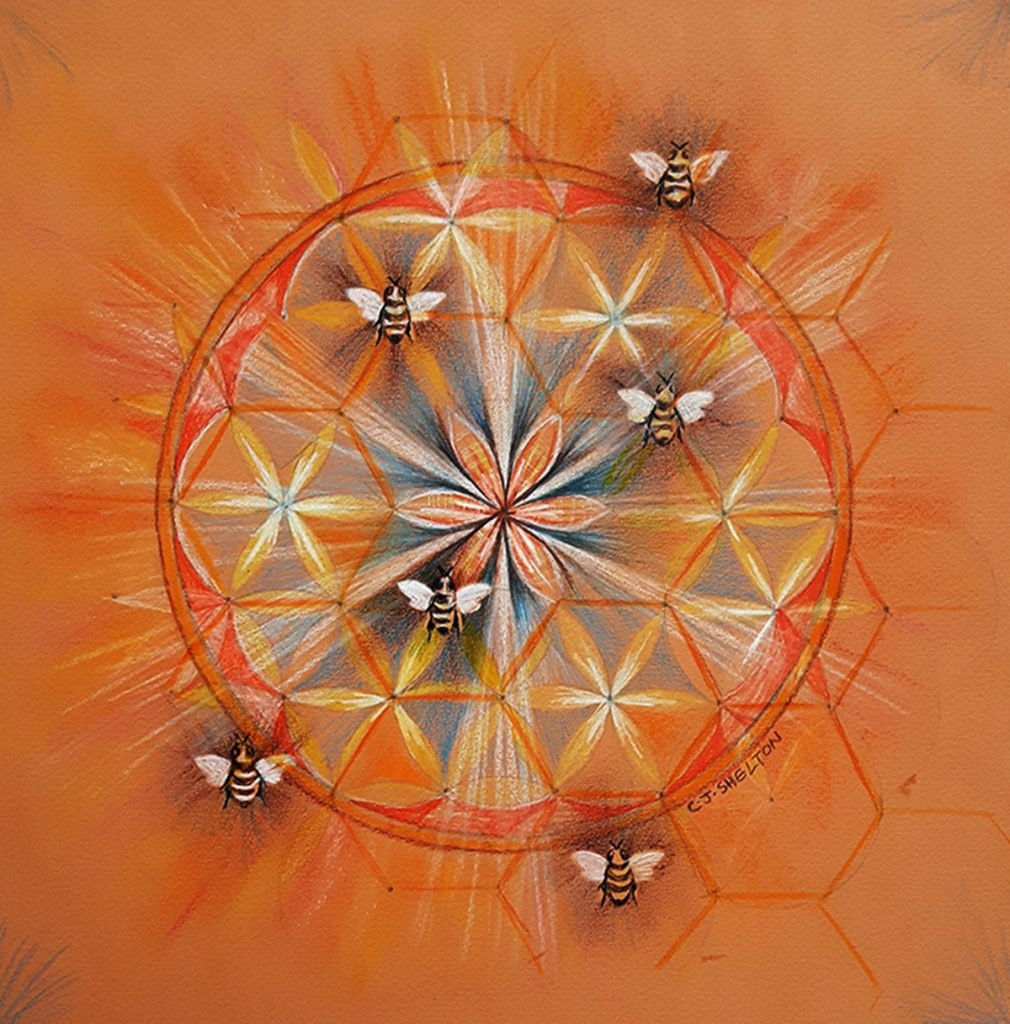 Bee Mandala by CJ Shelton