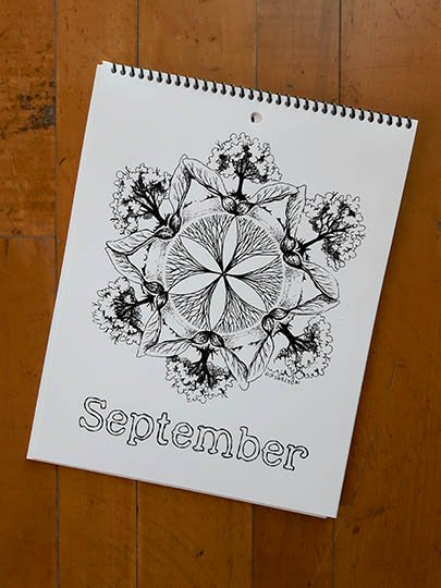 Calendar Image - September