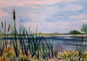 Marshes & Ponds Watercolour Workshop
