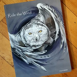 Ride the Wind Journal - Front Cover